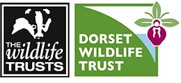 the dorset wildlife trust logo